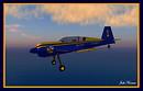 SU-29 Blue Angels Edition