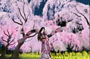 Japanse Dance