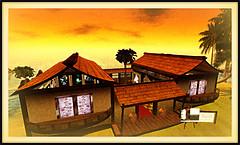 Mei Nemeth's Gallery