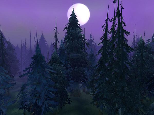 Bark & The Moon