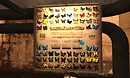 Garden Butterflies BIG BOARD 1.0.3 (small functioning) - Torley Linden