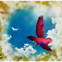 landing of parrot