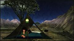 V goes camping