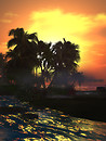 Em Larsson Sunset Wallpaper