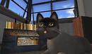 kissingcats-Snapshot_004