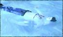 Aqua Immersion
