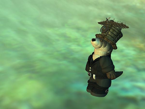 scottius goes for a swim