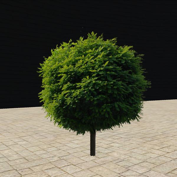 QT tree 56 round