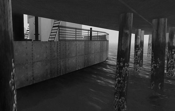 Inner Harbor  ~ under the docks