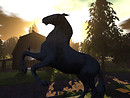 Horse Sculpture at Equestrian Barn