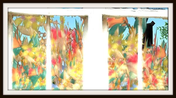 Shabby Window 1