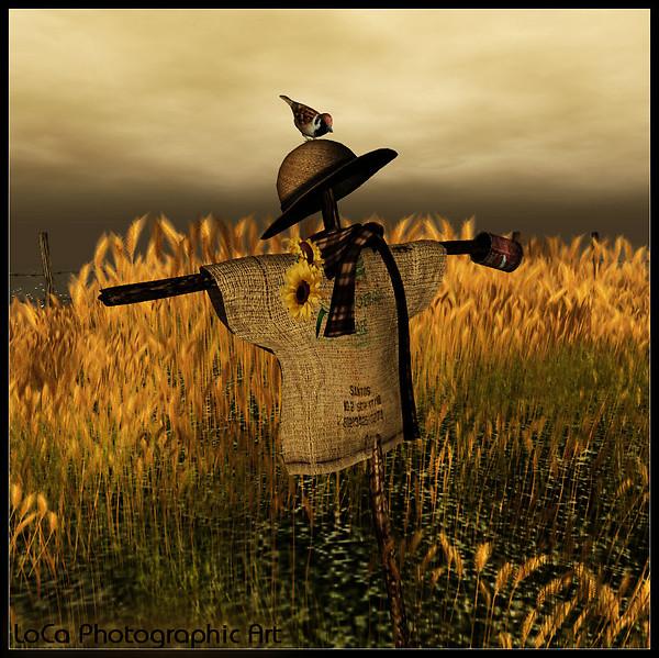 I ain't afraid of no Scarecrow~LC
