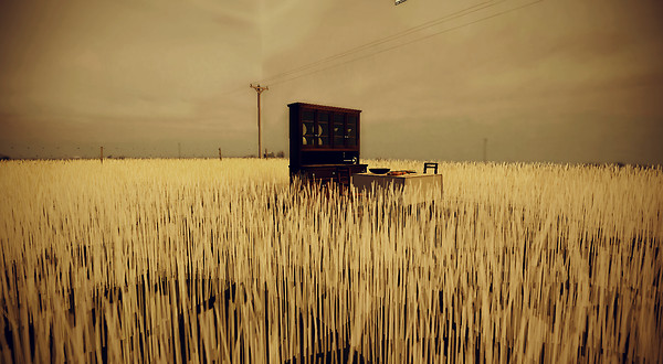 AM Radio Wheat field 2