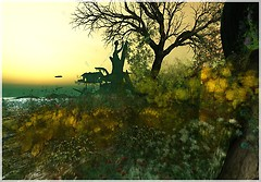 beautiful second life landscape