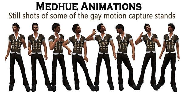 Gaystands