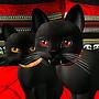 Fangtastic Cat Show!