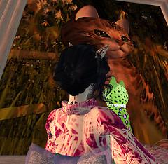 June24_kittycats_photocontest1