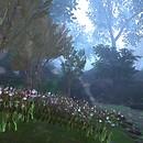 ~*Forest Floor*~ Gardens & Dream5