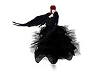_ Arm wings black 2