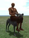 Riding-mesh-Wolf