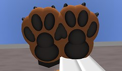 Large Collie footpaws