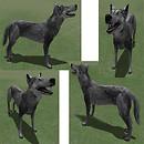 Wolfmesh2