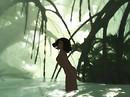 Jungle Spa