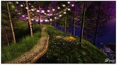 A beautiful pathway