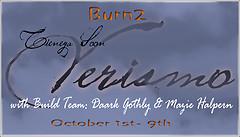 Verismo Burn2 logo 2