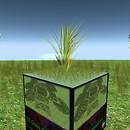 QT short grass meadow
