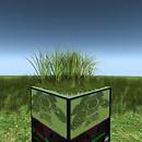 QT short dense grass meadow