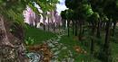 Daydream Island - forest walk