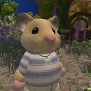 QT hamster av