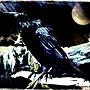 Ravens mist