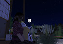 "Moon viewing ""Tukimi"""