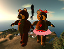 Stillman - another pretty bear place_001