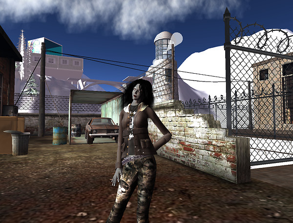 Rosecliff Canyon - nice urban decay style_001