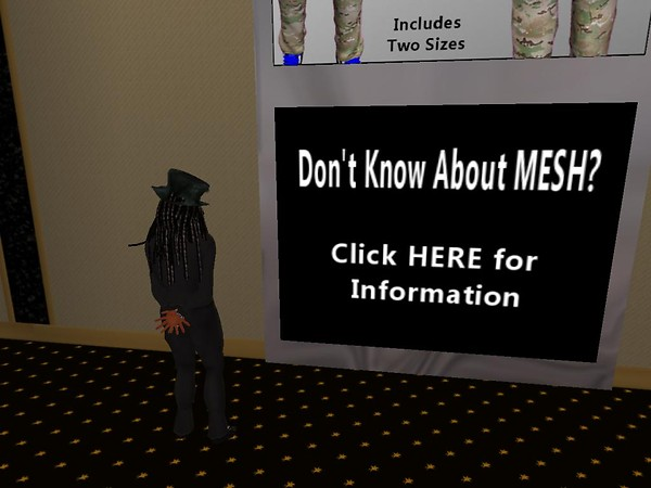 Mesh Boy Takes a Tour