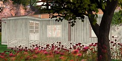 **SK** Design - Festival Home_01