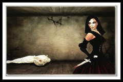The Bloody Widow