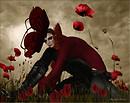 Zachary~Poppy Flower
