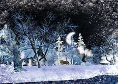 Frosty Night