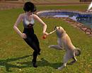My sim and my pet