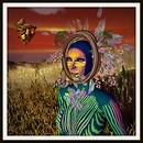 Indigo Woman
