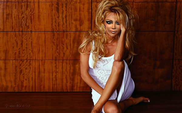 Pamela Anderson morphed to Cat