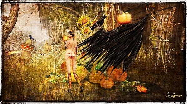Pumpkins (eheh)