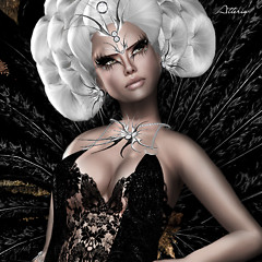 Noir Princess Closeup