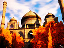 mosque in fall