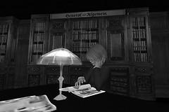 In der Bibliothek