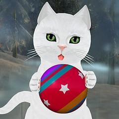Russian White Toy Kitten